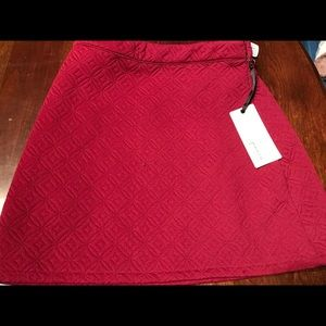 Forever 21 Deep Red skirt